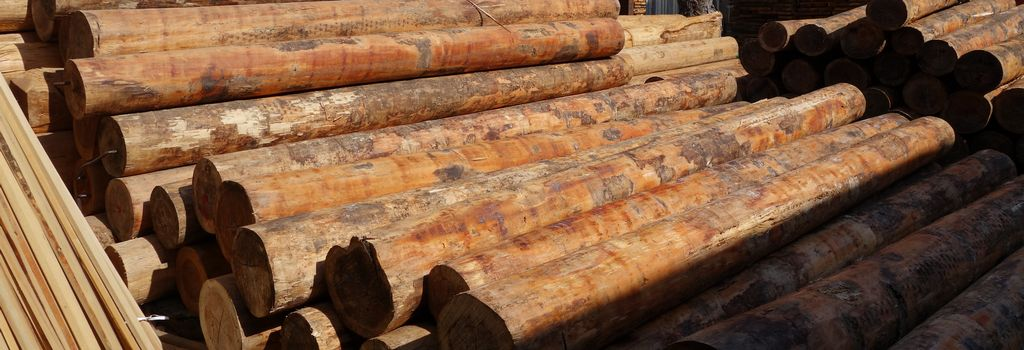 赤松・杉製品製材 京北商会